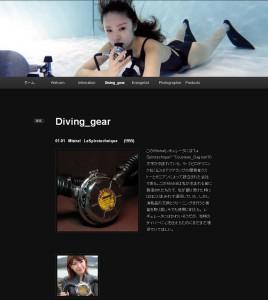 blog_info